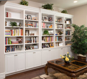 Familyroom storage cabinet display