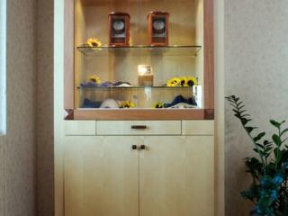 Jewelry store display case