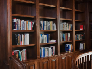 Library shelving/coffered ceiling